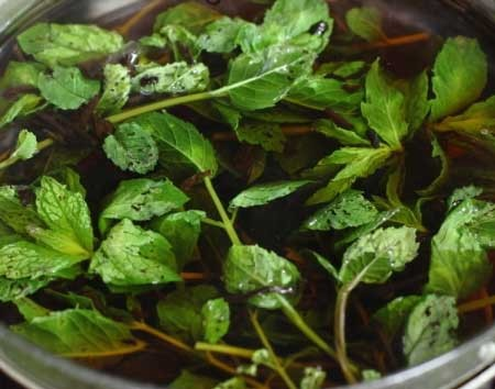 1. Stage. Bring 500 ml of water to a boil and pour tea, pepper, peas and sprigs of mint, cover and let it brew for 5-10 minutes.