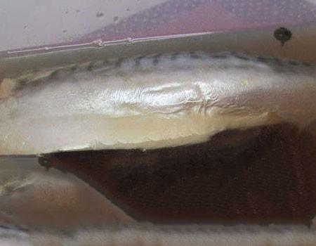 1. Этап. Положить скумбрия в остывший рассол.