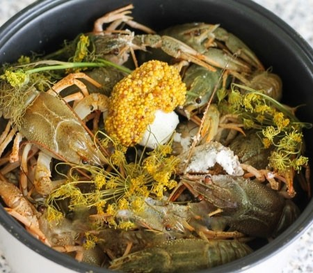 1. Stage. Transfer the crayfish to the multicooker bowl, add dill, salt and mustard, you can add another leaf of bay leaf if desired.